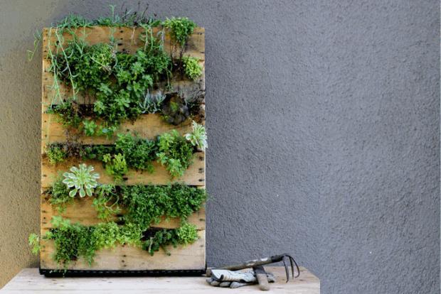 Jardines verticales diy el rinc n de sonia - Jardines verticales exterior ...