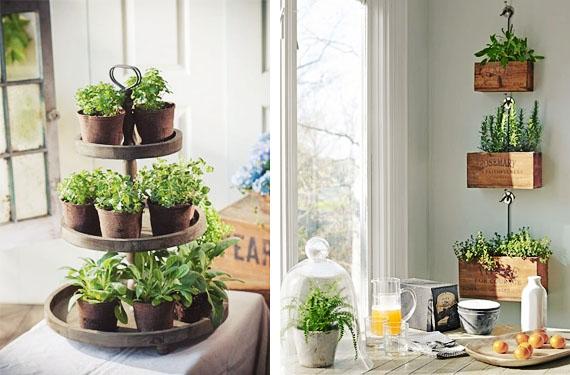 Hierbas y plantas arom ticas en tu cocina el rinc n de sonia - Plantas en la cocina ...