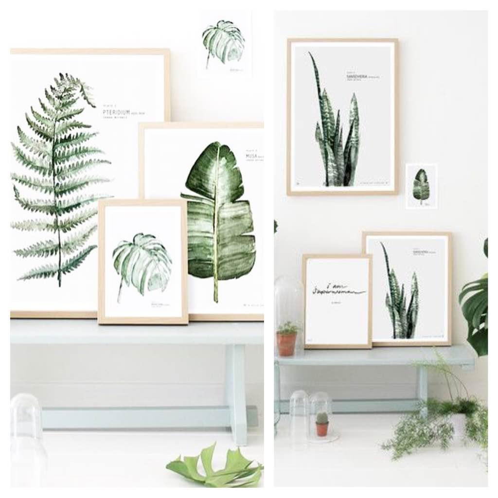 Tendencia botánica en tu decoración - El Rincón de Sonia