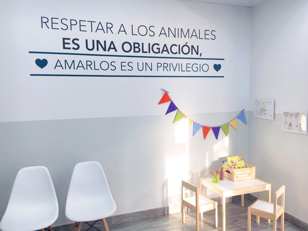 El rinc n de sonia blog de decoraci n - Proyecto clinica veterinaria ...